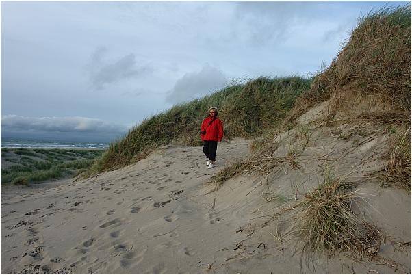 Dänemarkfan Edelgard in den Dünen an der Nordseeküste