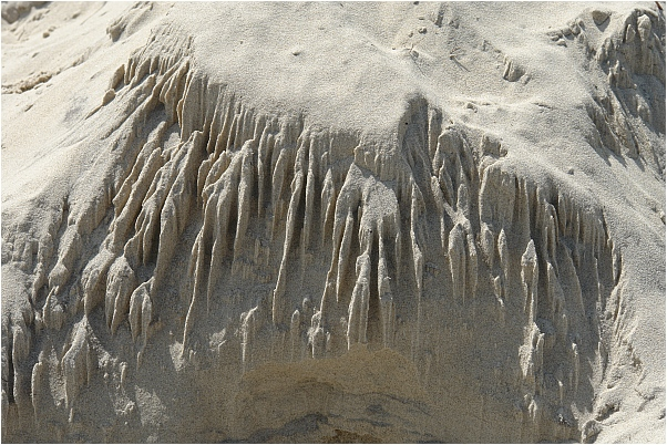 Der Wind formt die Dünen an Dänemarks Nordseeküste