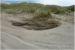 Dünen in Dänemark