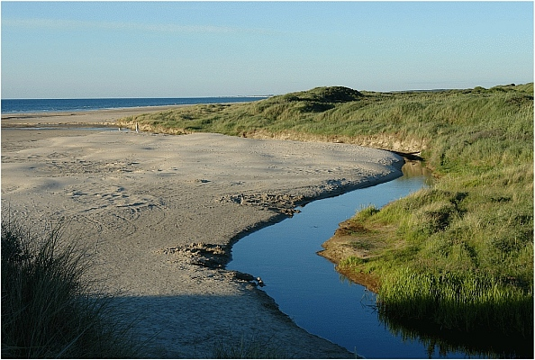 Flüsse in Dänemarks Dünen