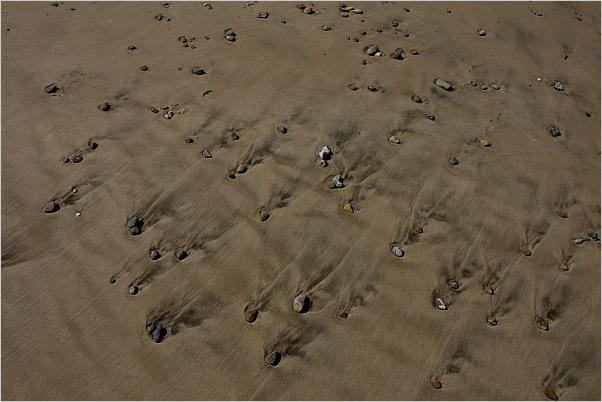 Der Wind gibt die Richtung im Sand der Dünen vor